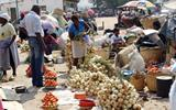 Zimbabwean government bans street vendors to fight Cholera outbreak.